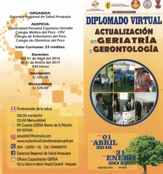diplomado_virtual