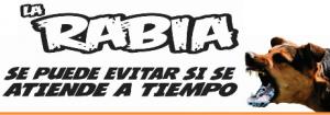 larabia2